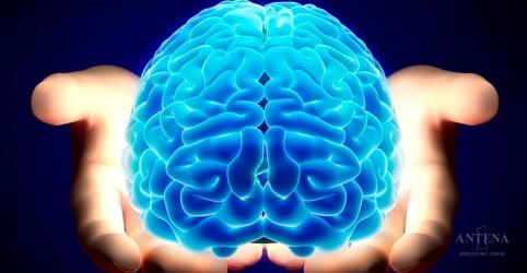 Estudo aponta possibilidade de 'corrigir' cérebro de autistas com medicamento
