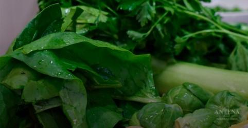 Placeholder - loading - Imagem da notícia Os benefícios da ingestão de folhas verdes