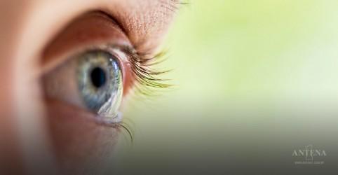 Placeholder - loading - Imagem da notícia Visão saudável pode beneficiar o cérebro