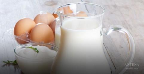 Placeholder - loading - Imagem da notícia Produtos lacteos integrais podem ser saudáveis