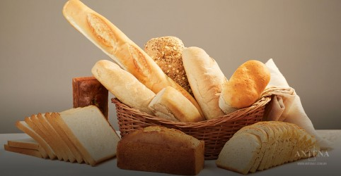Consumir carboidratos de forma moderada prolonga a vida