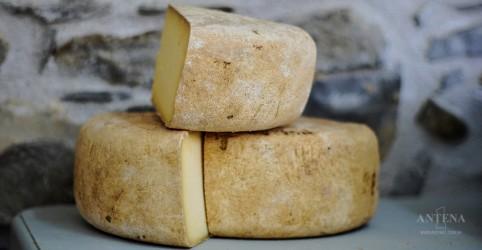 Placeholder - loading - Imagem da notícia Anvisa proíbe lotes de queijo e leite condensado
