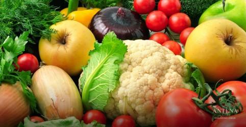 Cinco nutrientes importantes estão em falta nas dietas ao redor do mundo