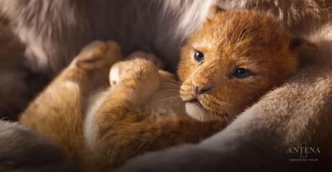 Placeholder - loading - Imagem da notícia Relembre as músicas de ''O Rei leão''