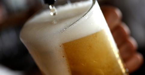 Amantes de cerveja enfrentam alta nos preços e escassez com mudanças climáticas, diz estudo