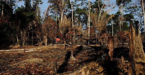 Placeholder - loading - Imagem da notícia Desmatamento da Amazônia atinge recorde em uma década