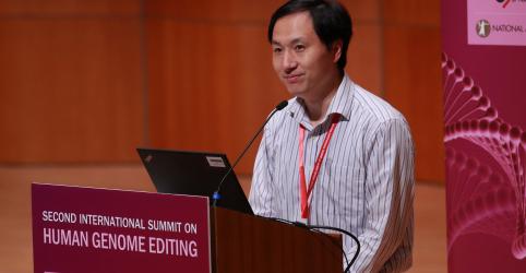 Placeholder - loading - Imagem da notícia Geneticista chinês diz que outra voluntária está grávida após edição genética