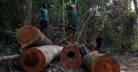 Placeholder - loading - Assassinatos, ameaças e milícias: desmatamento na Amazônia é crime em larga escala, diz HRW