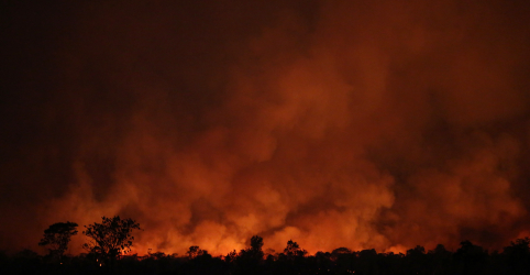 Sem Brasil, doadores liberam U$500 mi para preservar florestas tropicais