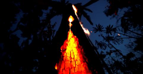 Placeholder - loading - Atendimentos médicos a crianças na Amazônia dobram com queimadas, aponta estudo