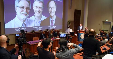 Placeholder - loading - Cientistas dos EUA e do Reino Unido ganham Nobel de Medicina