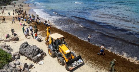 Placeholder - loading - Imagem da notícia Petróleo no Nordeste não afeta leilões, diz ministro; Petrobras vê agressão ambiental