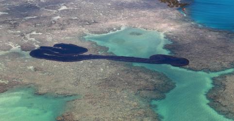 Placeholder - loading - Imagem da notícia Navio grego é suspeito de derramar petróleo no litoral brasileiro, diz PF