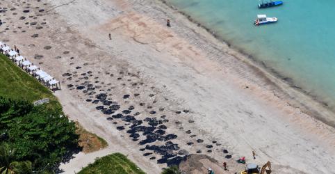 Placeholder - loading - Imagem da notícia Empresa dona de navio suspeito de derramamento diz que não foi contactada pelo Brasil