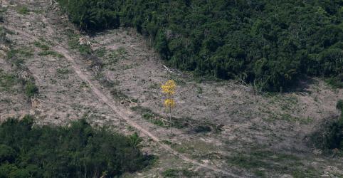 Placeholder - loading - Dado anual de desmatamento da Amazônia deve indicar entre 9 mil e 11 mil km2 de devastação, maior desde 2008