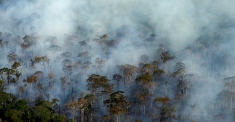 Após prisão de brigadistas, Bolsonaro lembra ter relacionado ONGs a incêndios na Amazônia