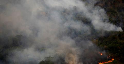 Governador do Pará determina troca de delegado na investigação sobre brigadistas