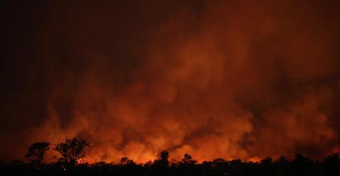 Placeholder - loading - Imagem da notícia Justiça do Pará manda soltar brigadistas acusados de envolvimento em queimadas