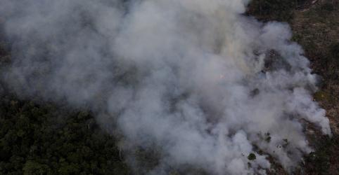 Placeholder - loading - Competência para investigar incêndios em Alter do Chão é federal, defende MPF