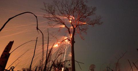 Incêndios na Amazônia: barreira para o aquecimento global pega fogo