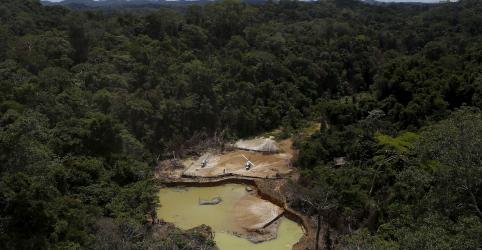 Placeholder - loading - Imagem da notícia PF faz operação contra fábrica ilegal de armas suspeita de abastecer garimpos em Roraima