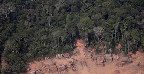 Placeholder - loading - Desmatamento em áreas indígenas em 2019 é o maior em 11 anos, mostra estudo