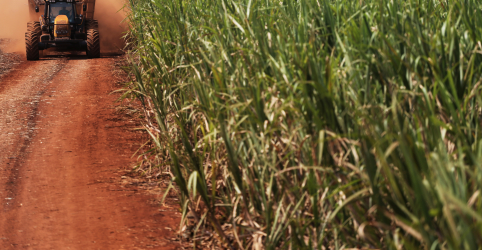 Brasil e Austrália formalizam consulta na OMC sobre subsídio ao açúcar da Índia