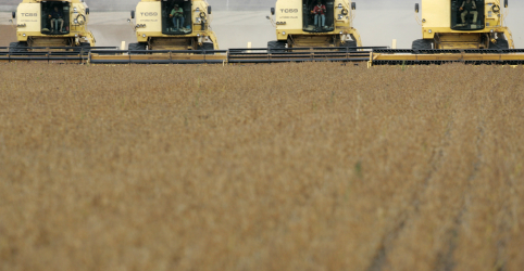 Placeholder - loading - Imagem da notícia Perspectiva para safra de soja do Brasil se consolida em torno de 114 mi t, apontam analistas