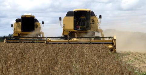 Placeholder - loading - Imagem da notícia Agroconsult eleva previsão de safra de soja 2018/19 do Brasil a 118 mi t