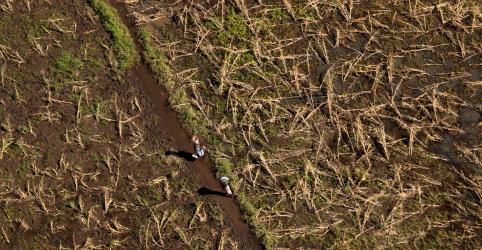 Placeholder - loading - Imagem da notícia Fome ameaça Moçambique depois de ciclone destruir plantações