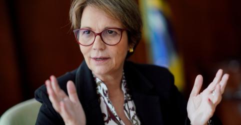Placeholder - loading - Escritório em Israel é 'meio-termo', diz ministra Tereza, que terá reunião com árabes