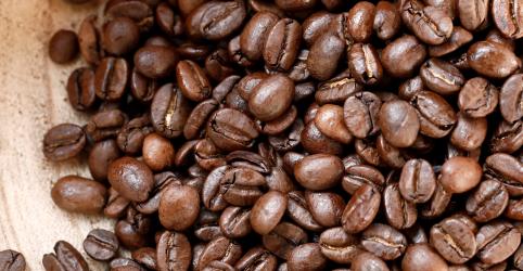 Placeholder - loading - Exportação total de café do Brasil cresce 24,6% em abril, diz Cecafé