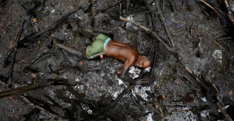 Placeholder - loading - Imagem da notícia WIDER IMAGE-Impactos da mudança climática afetam os mangues do Brasil