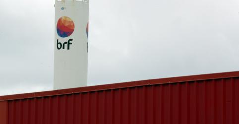 Placeholder - loading - Imagem da notícia Gigantes do setor de carnes, BRF e Marfrig discutem fusão de R$28 bi