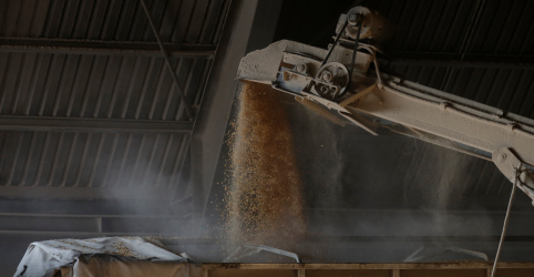 Com problema na safra dos EUA, ADM vende milho do Brasil à Smithfield, dizem fontes