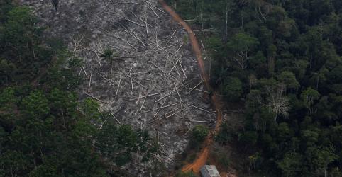 Principal doadora do Fundo Amazônia, Noruega diz estar preocupada com aumento do desmatamento
