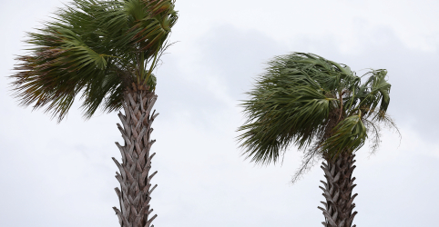 Placeholder - loading - Imagem da notícia Barry atinge Louisiana e enfraquece para tempestade tropical