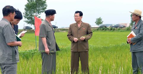 Desnutrição e doenças estão aumentando na Coreia do Norte, dizem ONGs