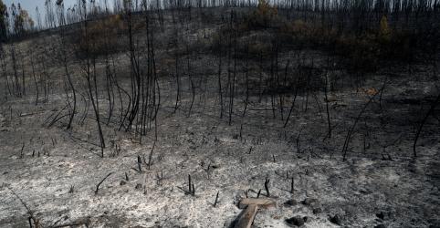 Portugal tem controle parcial de incêndios, mas clima preocupa