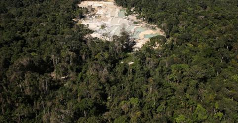 Placeholder - loading - Salles rejeita dado sobre alta do desmatamento em junho, mas não estima qual seria número real