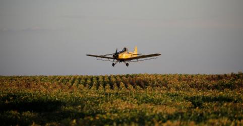 Aprovação mais rápida de pesticidas no Brasil não prejudica ambiente, diz ministra