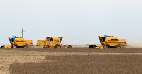 Placeholder - loading - Imagem da notícia Brasil pode liderar produção de soja 2019/20 com safra de 122,8 mi t, aponta pesquisa