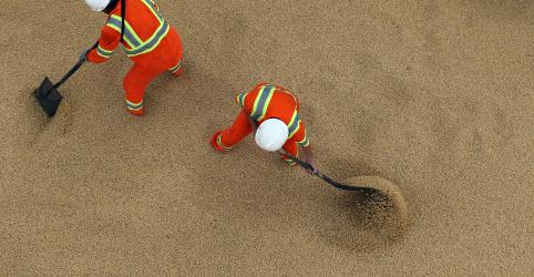 Placeholder - loading - Imagem da notícia ENTREVISTA-Dreyfus vê repetição de exportação atípica de soja do Brasil na 2ª metade do ano