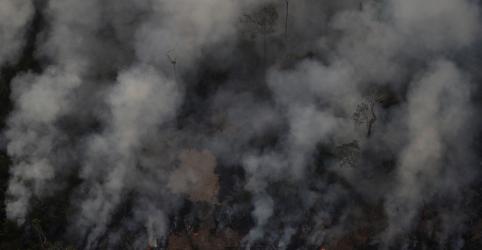 Placeholder - loading - MPF no Pará investigará queimadas e fiscalização ambiental no Estado