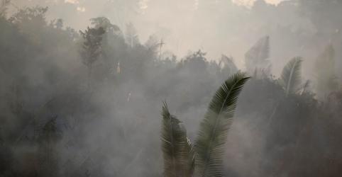 'É um ultraje inaceitável', dizem 52 ONGs em carta a Bolsonaro após declarações