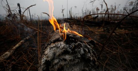 Brasil não está trabalhando com EUA sobre incêndios florestais, diz ministro de defesa