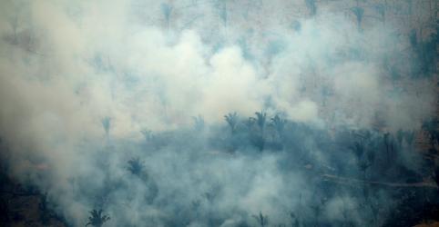Papa pede compromisso global para apagar incêndios na Amazônia