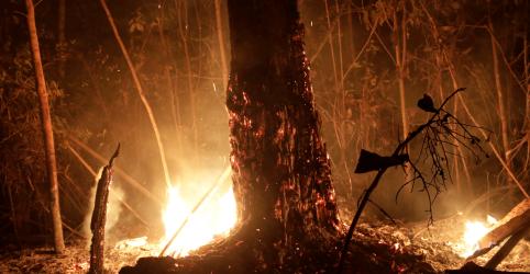 Nações do G7 estão perto de acordo para combater incêndios na Amazônia
