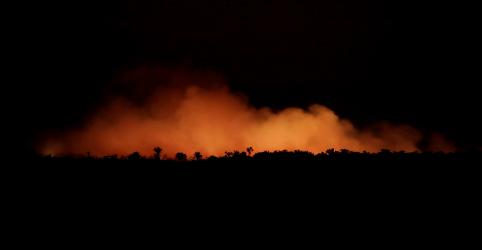 Placeholder - loading - Por que os incêndios da Amazônia estão espalhando uma crise no Brasil e no mundo?