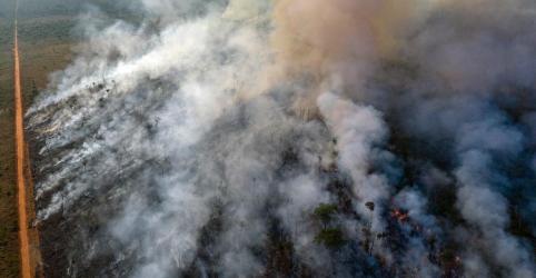 Placeholder - loading - Imagem da notícia Ibama alegou que não teve apoio necessário da PM do Pará para evitar 'dia do fogo', diz órgão ao MPF